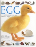 Book cover: 'Egg: A Photographic Story of Hatching'